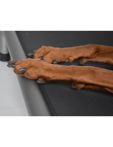 Max&Molly Silver Treat Bag XL