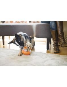 Zebra Classic Smart ID Collar